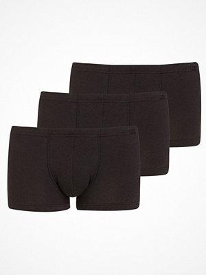 Jockey 3-pack Cotton Plus Short Trunk Black