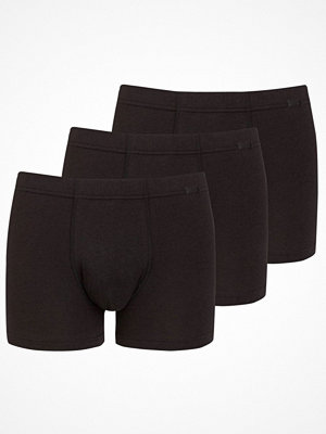 Jockey 3-pack Cotton Plus Trunk Black