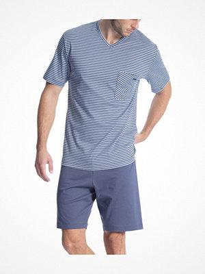 Calida Relax Streamline 1 Short Pyjama 41067 Blue