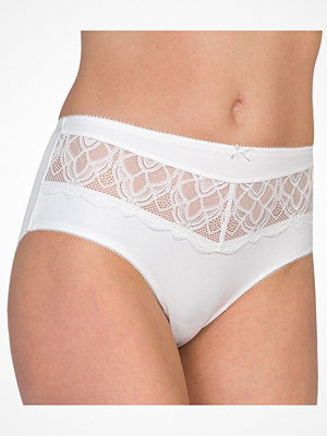 Felina Icon Brief White