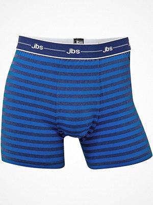 JBS Classic 95551 Drive Tights  Blue Striped