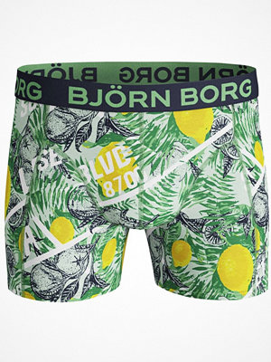 Björn Borg Core Lemon Shorts Green Pattern