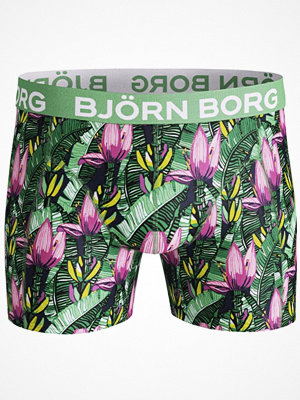 Björn Borg Lightweight Micro Banana Tree Short Green Pattern