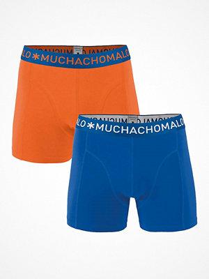 Muchachomalo 2-pack Solid Boxer Blue/Orange