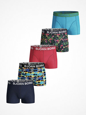 Björn Borg 5-pack Sunset and Exotic Shorts For Boys Multi-colour