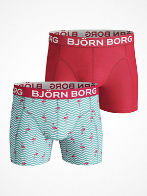 Björn Borg 2-pack Core Flamingo Stripe Sammy Multi-colour