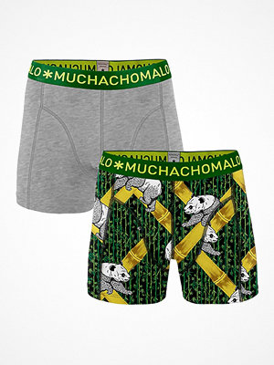 Muchachomalo 2-pack Solid Panda Boxer Multi-colour
