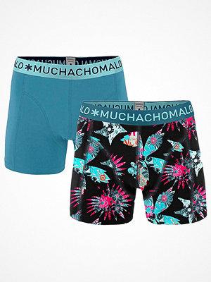 Muchachomalo 2-pack Solid Extinct Plants Boxer Multi-colour
