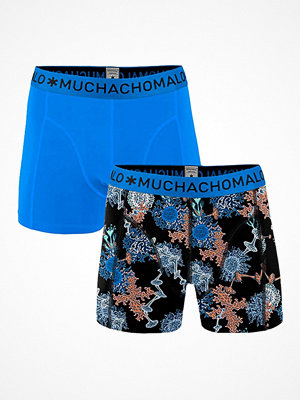 Muchachomalo 2-pack Solid Mold Boxer Multi-colour