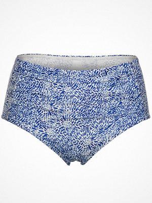 Scampi Rita Blue Pattern