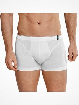 Schiesser 95-5 Shorts 3XL-6XL White