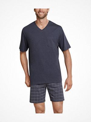 Schiesser Day and Night Short Pyjama V-neck Anthracite
