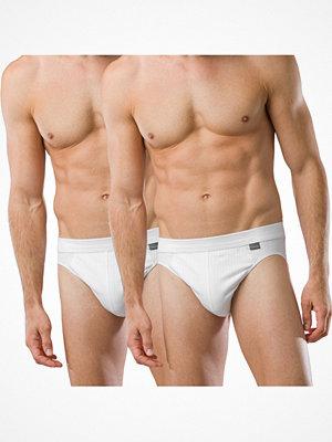 Schiesser 2-pack Authentic Rio Briefs White