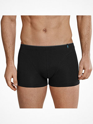Schiesser 95-5 Shorts Black