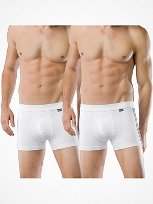 Kalsonger - Schiesser 2-pack Essentials Cotton Boxer Briefs White