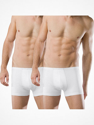 Kalsonger - Schiesser 2-pack Essentials Boxer Briefs White