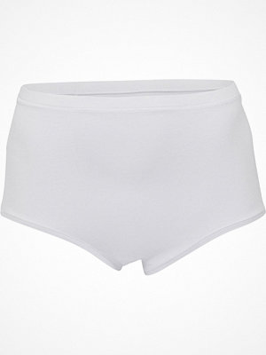 JBS of Denmark Organic Cotton Maxi Brief White
