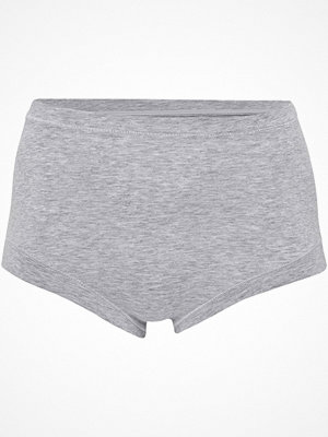 JBS of Denmark Bamboo Maxi Brief Light grey