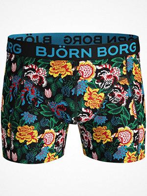 Kalsonger - Björn Borg Cotton Stretch Shorts 1931 Yellow Pattern