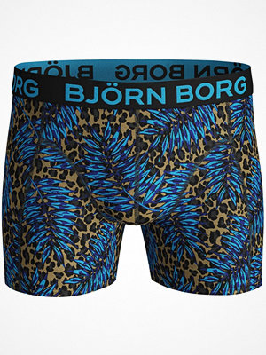 Björn Borg Cotton Stretch Shorts 1931 Pattern-2