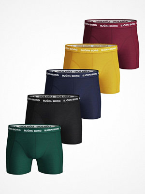 Björn Borg 5-pack Essential Shorts 1935 Multi-colour