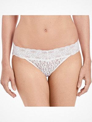 Wacoal Halo Lace bikini Ivory