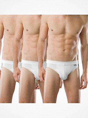 Schiesser 3-pack Essentials Cotton Rio Briefs White