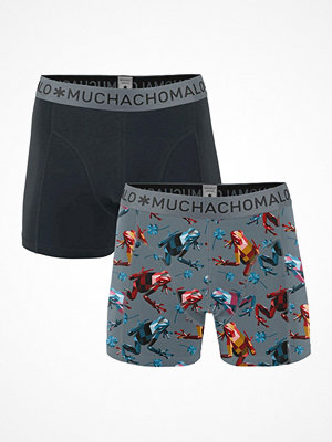 Muchachomalo 2-pack Cotton Modal Frog Boxer Multi-colour