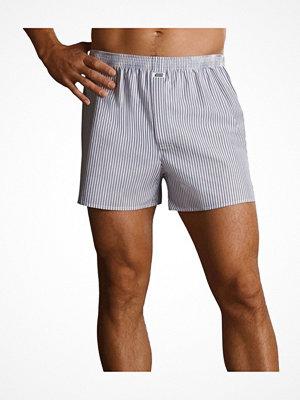 Kalsonger - Jockey Woven Poplin Boxer Shorts White w stripe