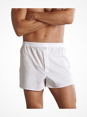 Kalsonger - Jockey Woven Poplin Boxer Shorts White