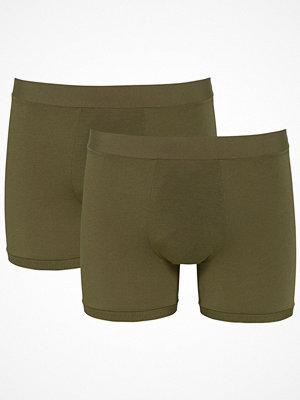 Kalsonger - Sloggi 2-pack Men GO Allround Short Darkgreen