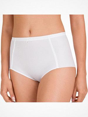 Felina Rhapsody Panty White