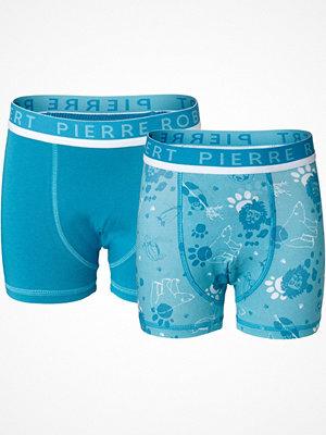 Pierre Robert 2-pack X Jenny Skavlan Kids Boxer For Boys Blue