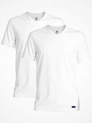 Ted Baker 2-pack Modal Basics V-Neck T-Shirt White