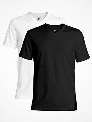 Ted Baker 2-pack Modal Basics V-Neck T-Shirt Black/White