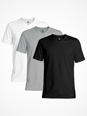 Ted Baker 3-pack 24 7 Basics V-Neck T-Shirt Black/Grey