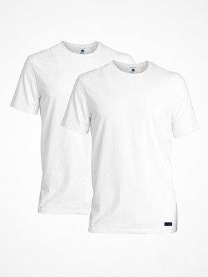 Ted Baker 2-pack Modal Basics Crewneck T-Shirt White
