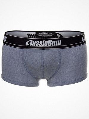 aussieBum AussieBum WJ Pro Hipsters Lt blue w Grey