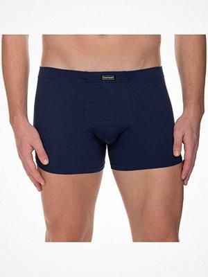 Bruno Banani Check Line 2.0 Shorts Navy-2
