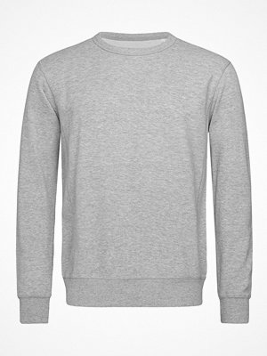 Stedman Sweatshirt Men Long Sleeve Greymarl