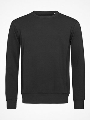 Stedman Sweatshirt Men Long Sleeve Black