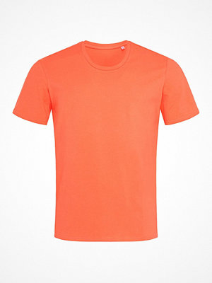 Stedman Clive Relaxed Men Crew Neck Apricot