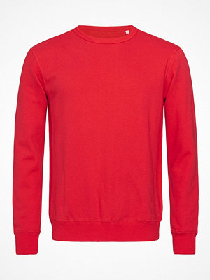 Stedman Sweatshirt Men Long Sleeve Red