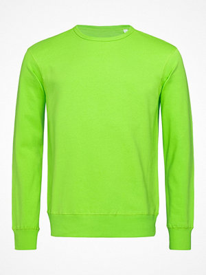 Stedman Sweatshirt Men Long Sleeve Limegreen