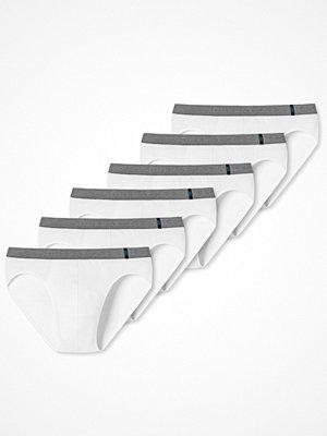 Schiesser 6-pack 95-5 Rio Briefs White