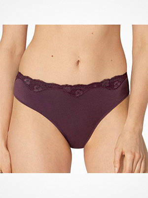 Triumph Touch Of Modal Tai Plum