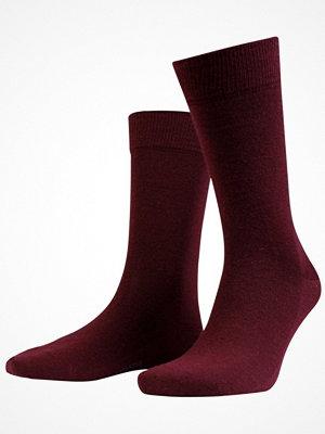 Amanda Christensen Grade Merino Wool Sock Darkred
