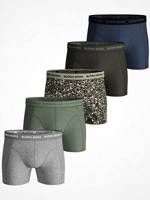 Kalsonger - Björn Borg 5-pack Essential Shorts 2045 Multi-colour