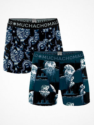 Kalsonger - Muchachomalo 2-pack Cotton Stretch Climate Change Boxer Blue Pattern
