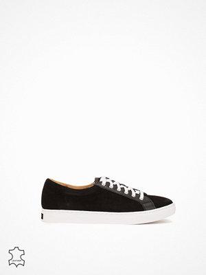 Polo Ralph Lauren Drew Sneakers Svart